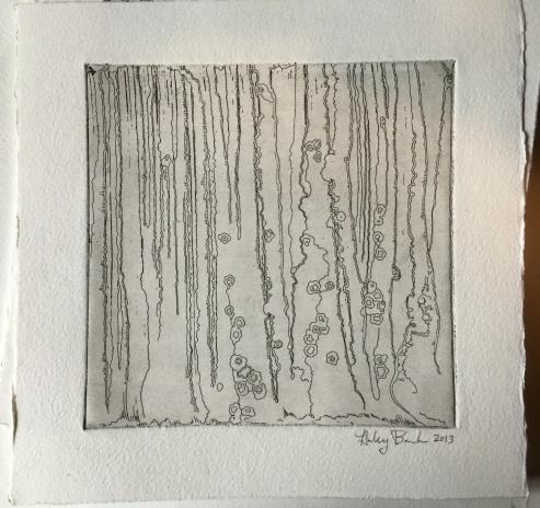 Birch Beginnings