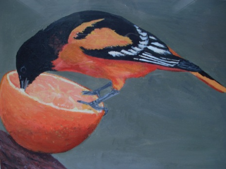 The First Oriole